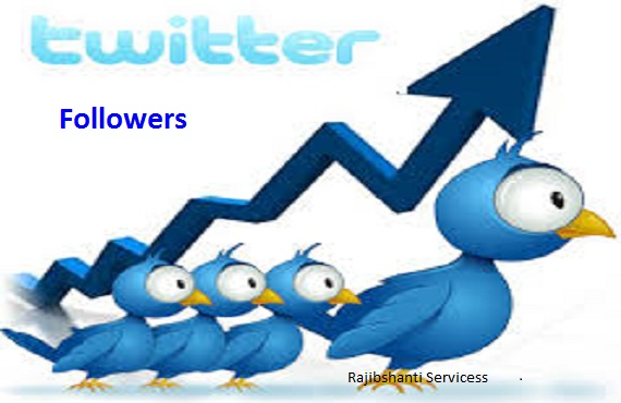 Provide you 4000 High quality twitter followers