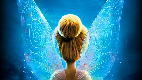 give Fairy and Angel tarot/orcale multideck card psychic readings