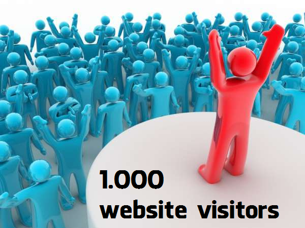 give your website 1000 real human view