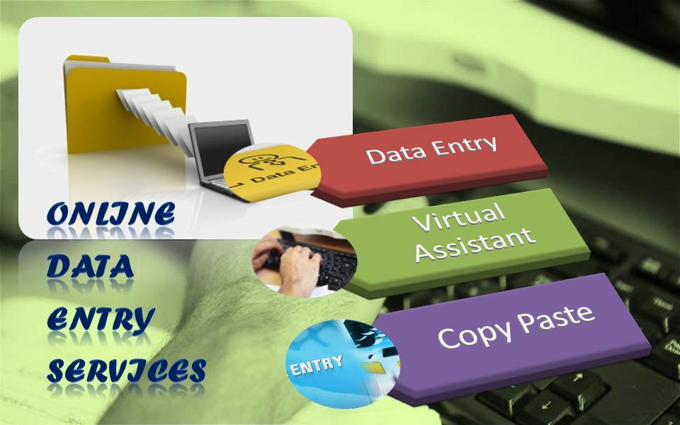 Professional DATA Entry Services in Ms Word Execl