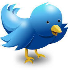 give you 6000 Twitter followers