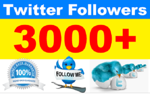 add 3000 Permanent Twitter Followers for