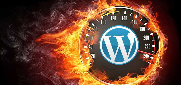 Create 404 page, search form and post pagination in your wordpres site