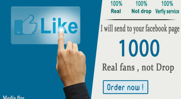 promote your Facebook Page to get 1000 Likes