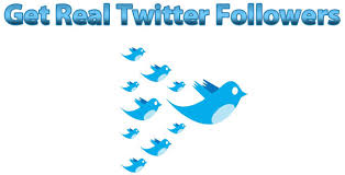 give you 8000 real twitter follower