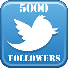 deliver 5000 Twitter followers within 48 Hours