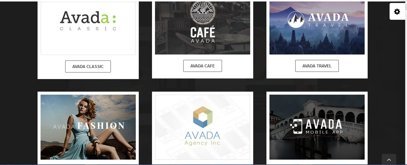 customize WordPress Avada THEME