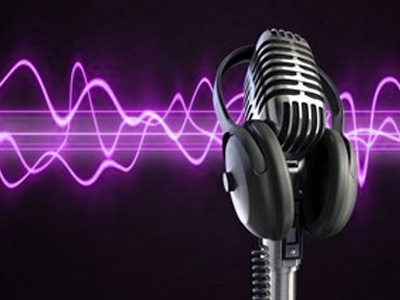 do 20 voice overs (20 lines, messages etc)