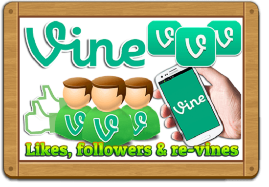 give you 240 likes each in Vine, YouTube, Facebook