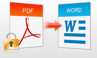 turn your PDF doc into a Word doc