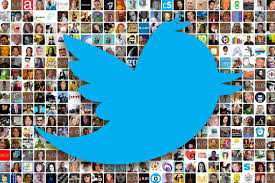 supply unlimited TWITTER followers for 30 days