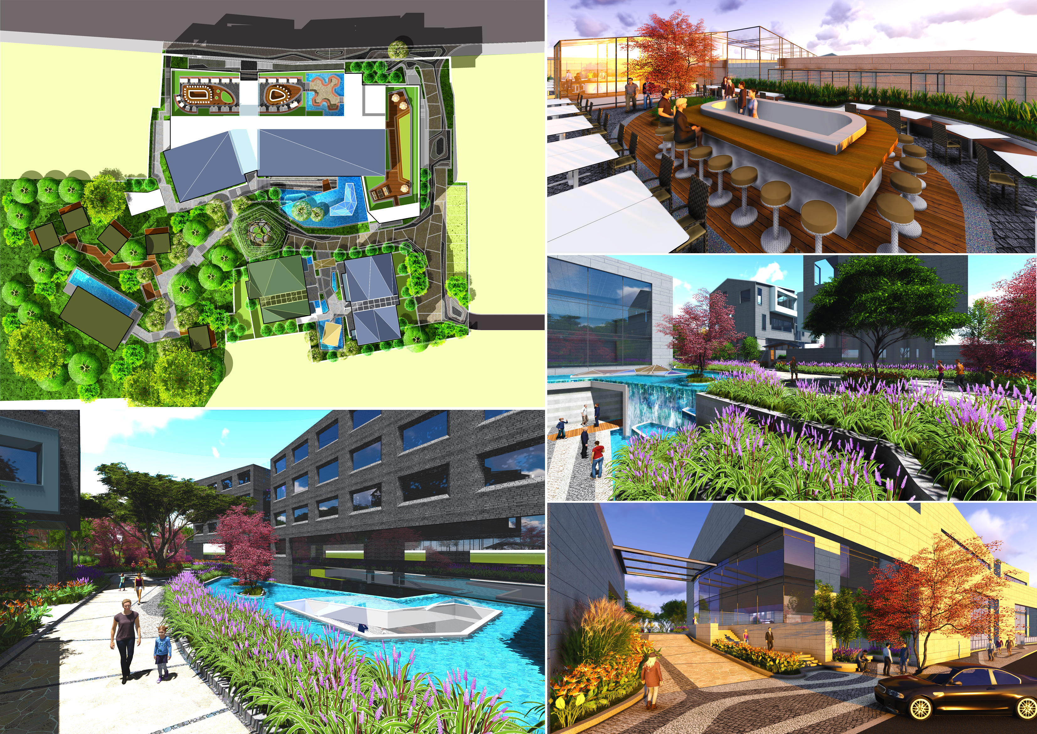 design any architectural and landscape projects
