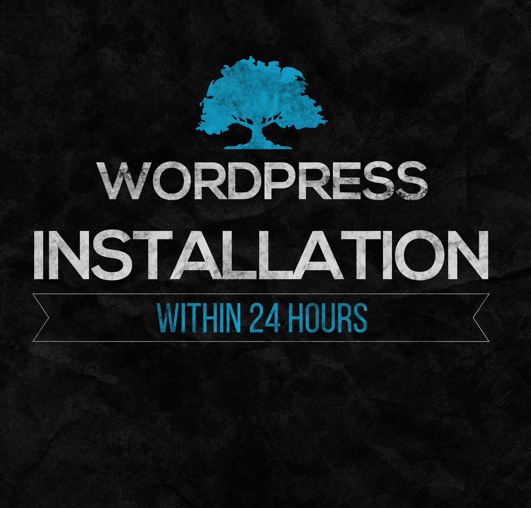 install wordpress, template and 5 plugins in 24h