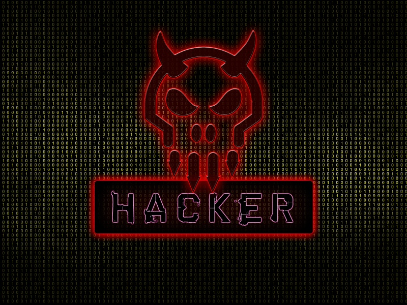 try to hack your site in 10 different ways and report the results to you