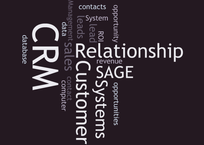 provide advice and consultation on your Sage CRM system