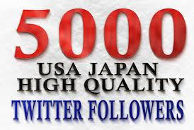 provide 5000 twitter followers.