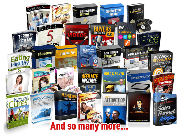give best 700 ebooks various niches plr, mrr, resale rights