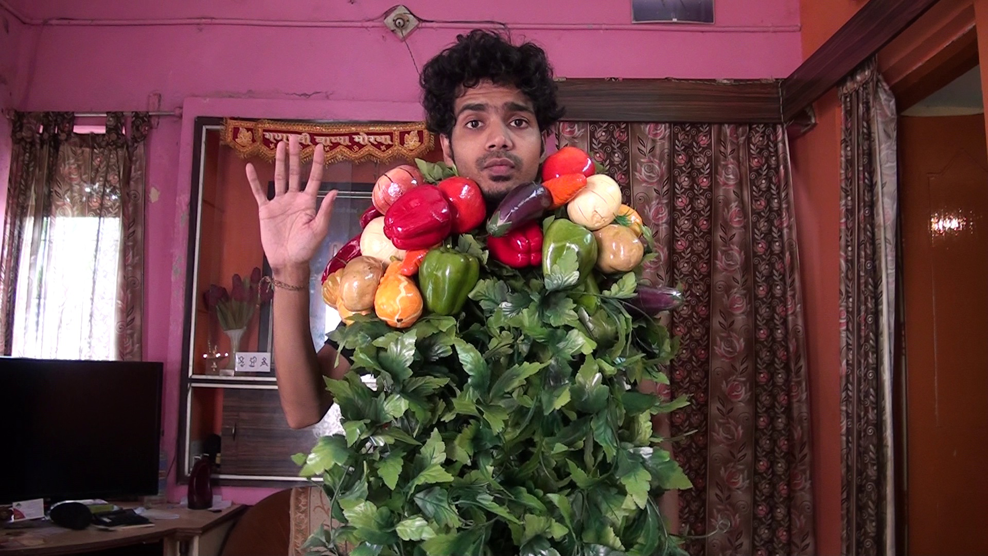 say whatever you want with my vegetable man costume