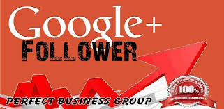 provide you 300 google plus followers