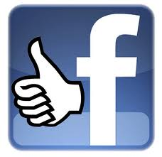 add 200 FACEBOOK Likes (100%) real and genuine High Quality To Facebook Fanpage