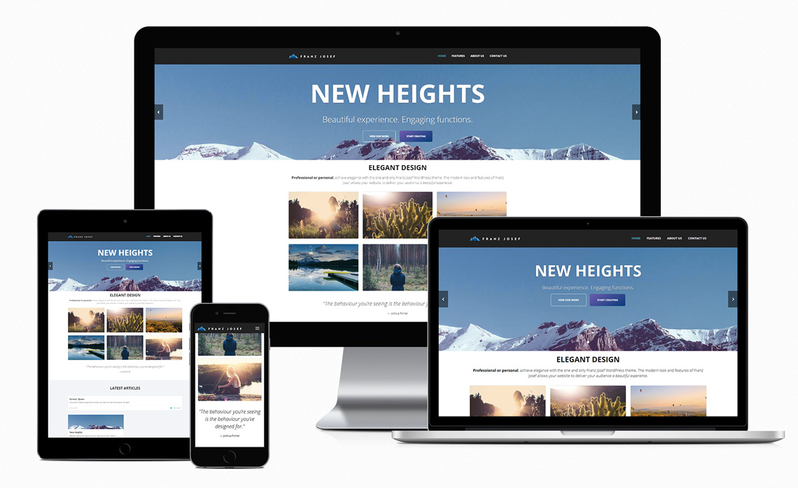 give you 500 premium wordpress responsive themes