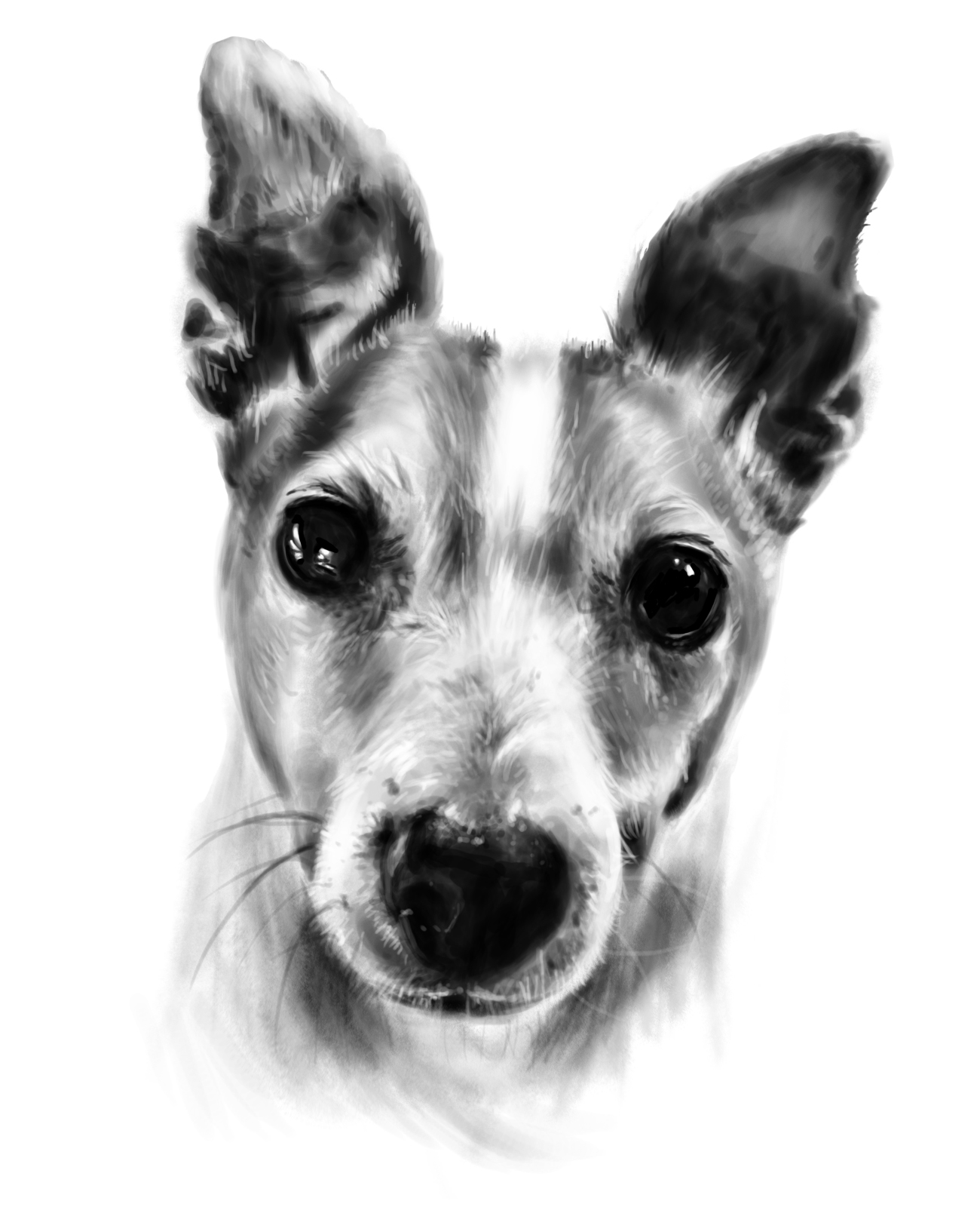create a beautiful digital painting of your pet