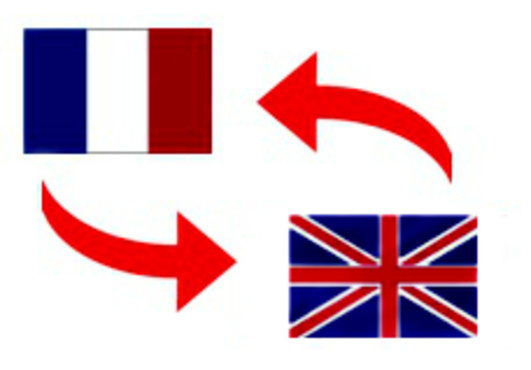 Translate a page of text from English to French and vice versa