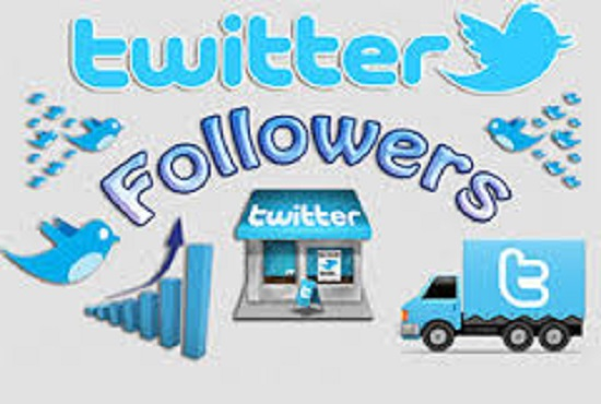 Provide 4000 Twitter Followers