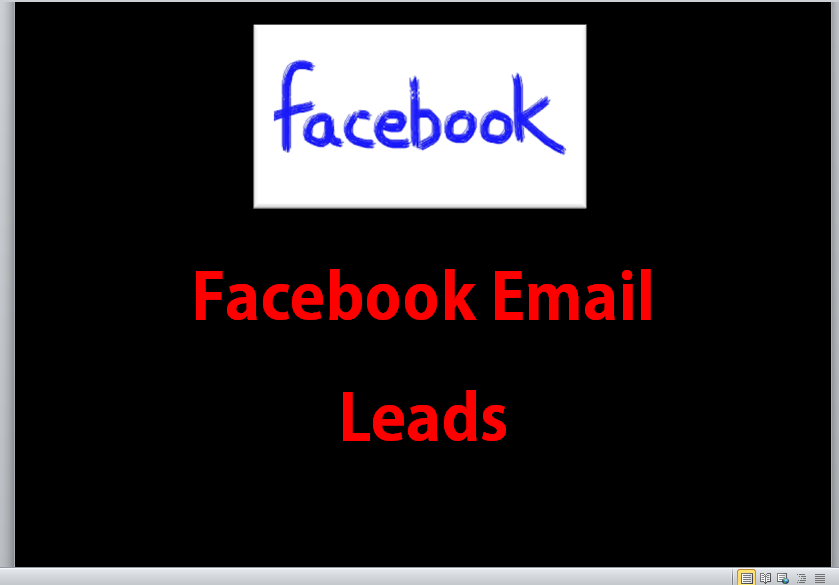 find you 20 local business leads from facebook