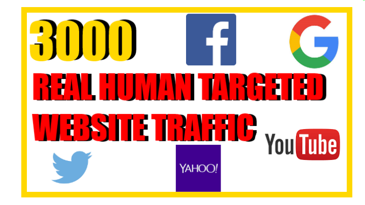 get you 3000 REAL HUMAN TARGETED WEBSITE TRAFFIC