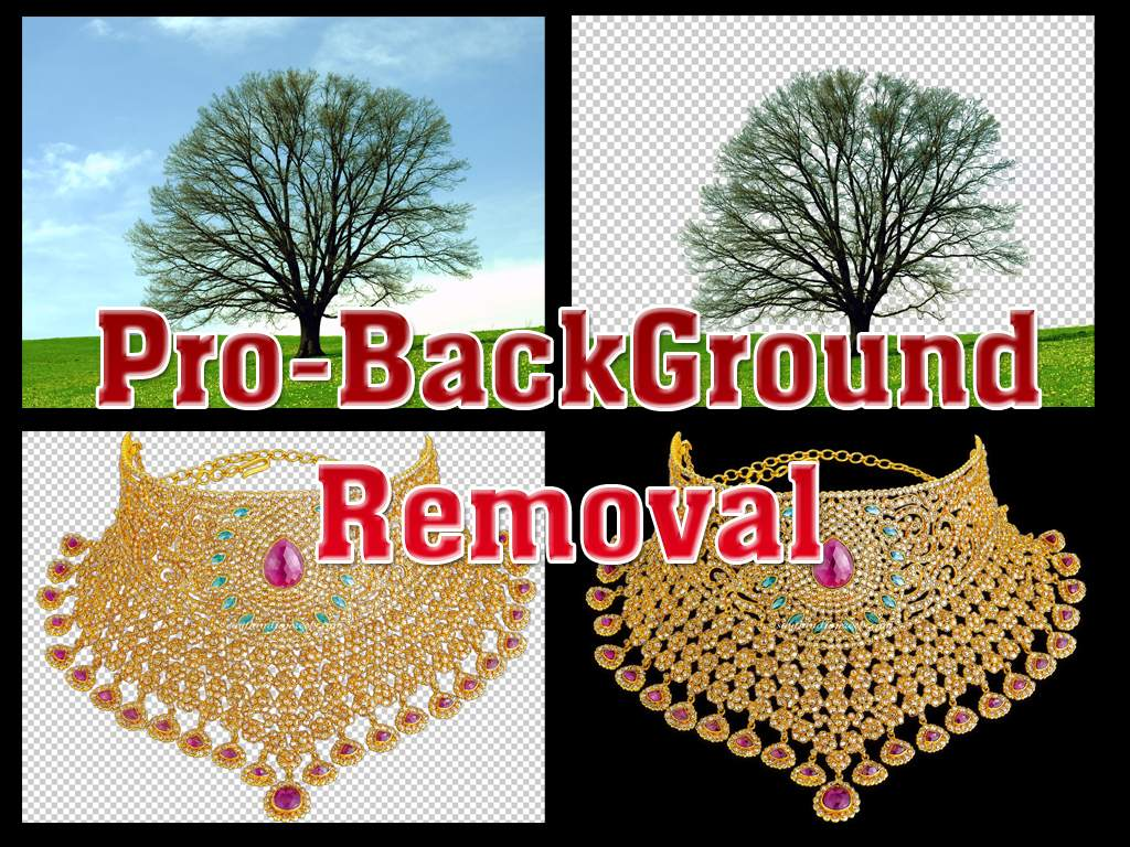 remove 10 photos background within 24 Hours
