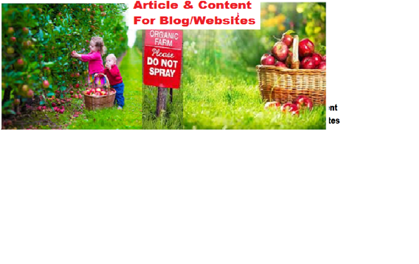 write quality unique article/content for blog/websites  only$5 as a Expert Business Writer.