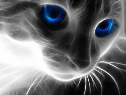 tell you what your cat's mystical nature is