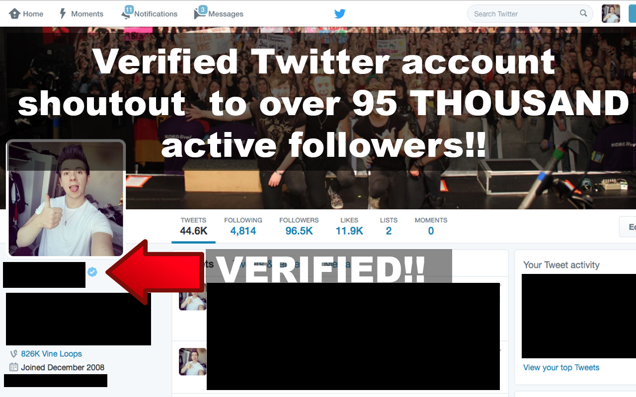 promote you on my verified twitter account with 95k active followers