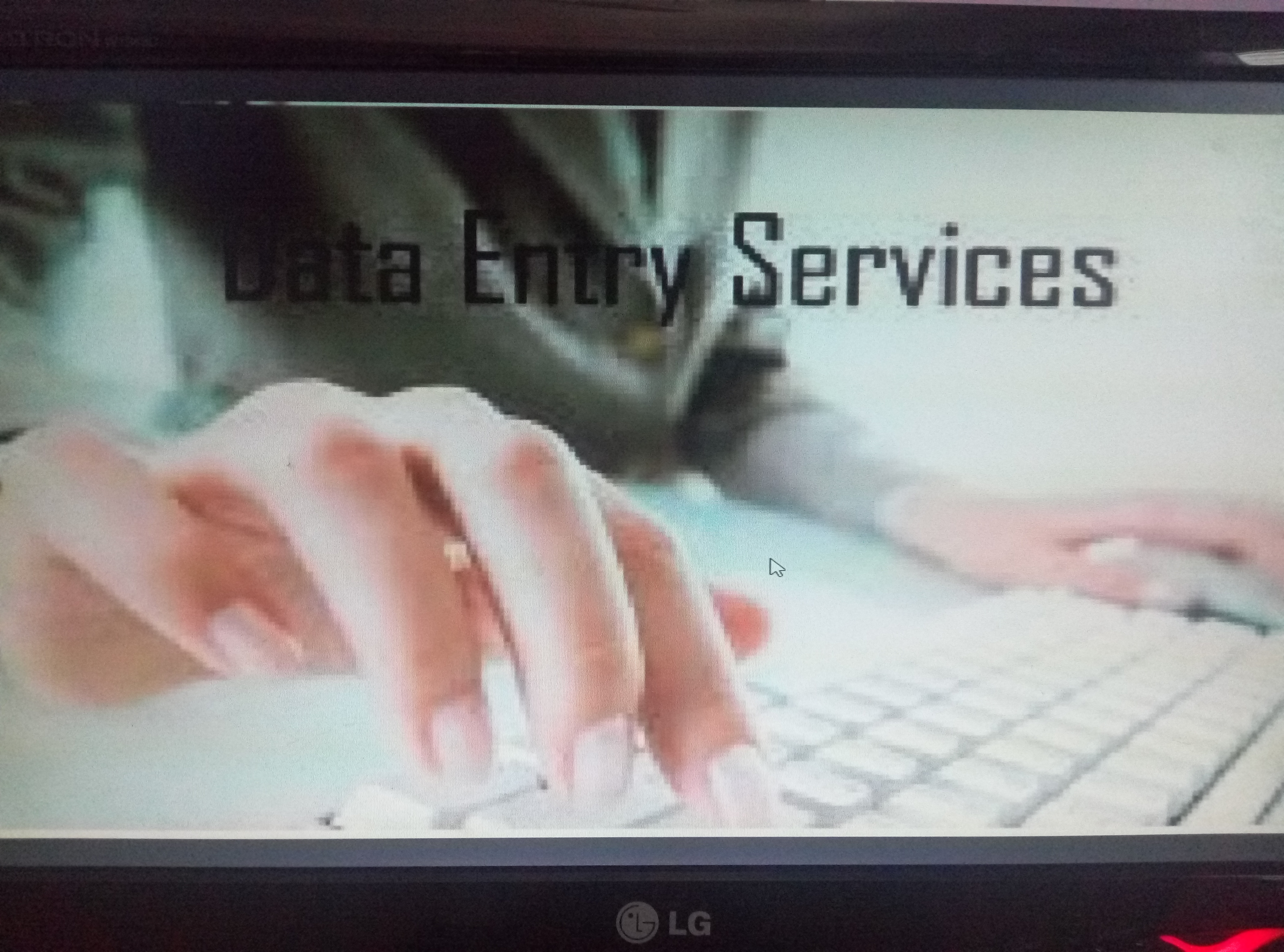 do data entry accurately at lower price