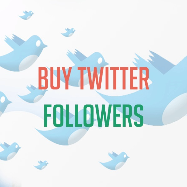add 5,000+ high quality TWITTER FOLLOWERS to your Twitter Account WITHOUT needing your password in just 12hours