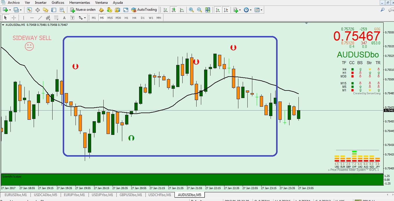 give you a profitable Binary Options Indicator and template