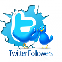 deliver 1,000 Real Twitter Followers