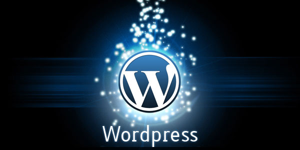 do any types of wordpress jobs.
