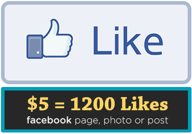 add 1000 Likes (Facebook page, photo or post)