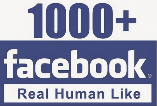 give 1000+ High Quality Real, Active Facebook Likes