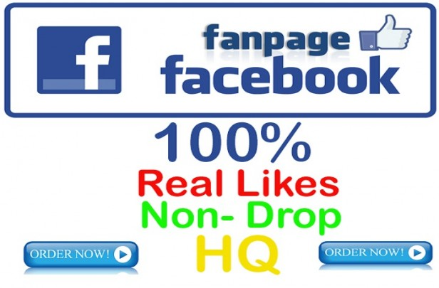 add 250 Real Facebook Post Likes