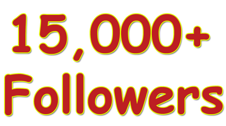 Provide 15,000 Solid Twitter Followers