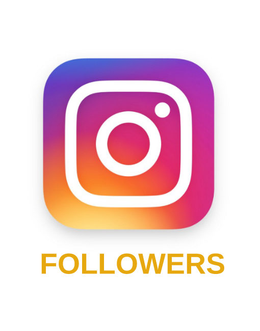 give +500 Instagram High Quality Followers