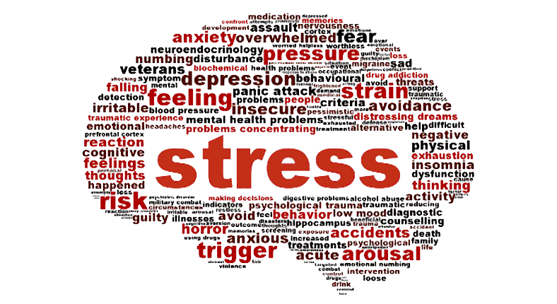 Sale book about The Psychology of Stress