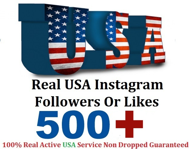 give 500+ USA instagram followers