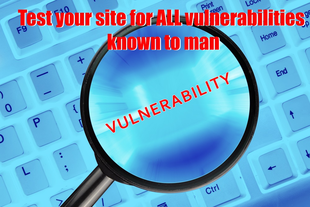 Test your site for ALL vulnerabilities known to man