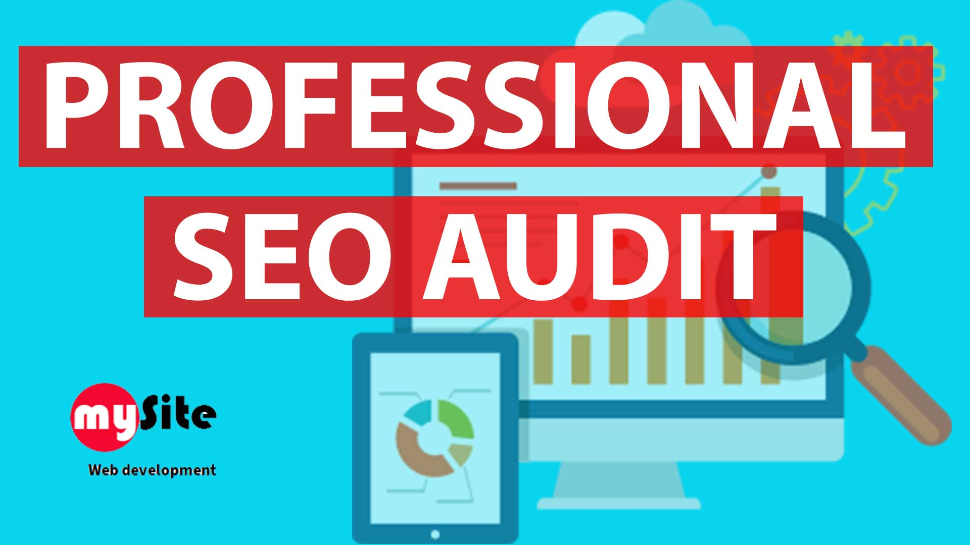 provide professional SEO and domain strength audit