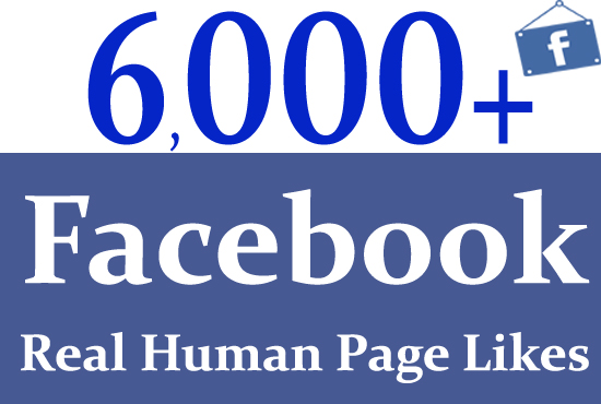do amazing facebook marketing worldwide 6000 page like