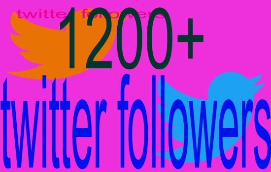 give you 1200+Twitter Followers